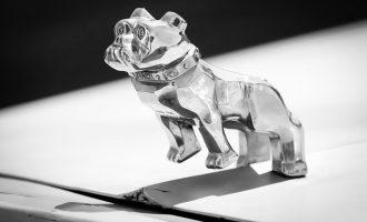 Mack Trucks Bulldog